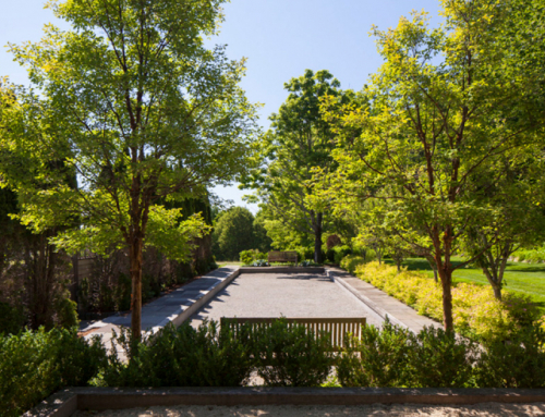 The Importance of Landscape Architecture and Design